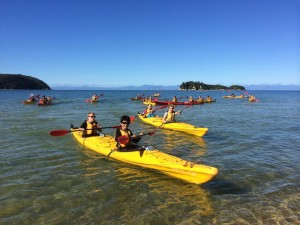 Hausch und Partner South Island Tour